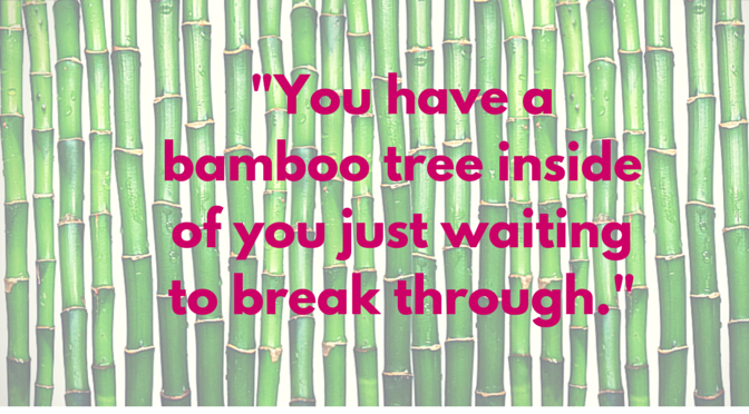 Keep Watering Your Bamboo Tree